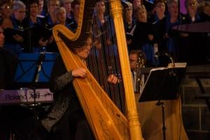Reinilde Zevenbergen - Buys - Harp